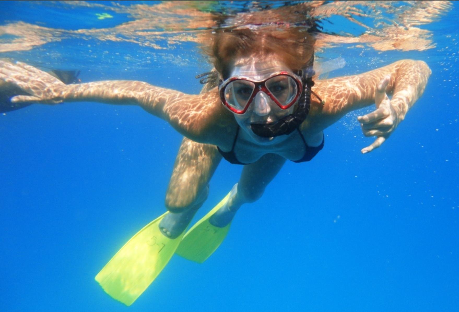 Turtle & Shipwreck Snorkeling